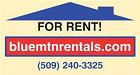 Blue Mountain Rentals